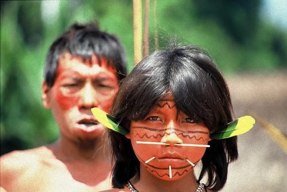イゾラド やらせ アマゾン 女性 病気 NHK 画像